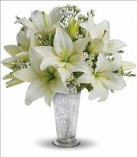 Written in the Stars by Teleflora by The Foliage Shoppe