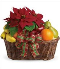 Fruit and Poinsettia Basket by The Foliage Shoppe
