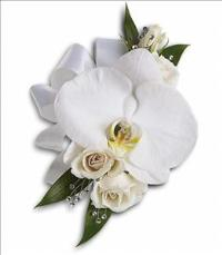 White Orchid and Rose Corsage by The Foliage Shoppe