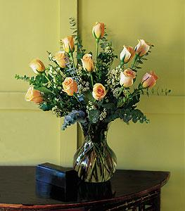 Dozen Pale Peach Roses by The Foliage Shoppe