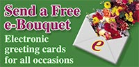 Send a Free E-Bouquet!